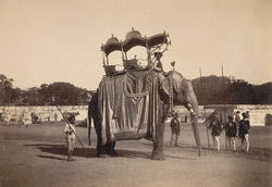 Elephant with golden ambari [howdah], Baroda